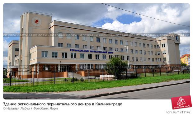 http://sdelanounas.ru/images/img/prv.lori-images.net/0001911142-preview.jpg