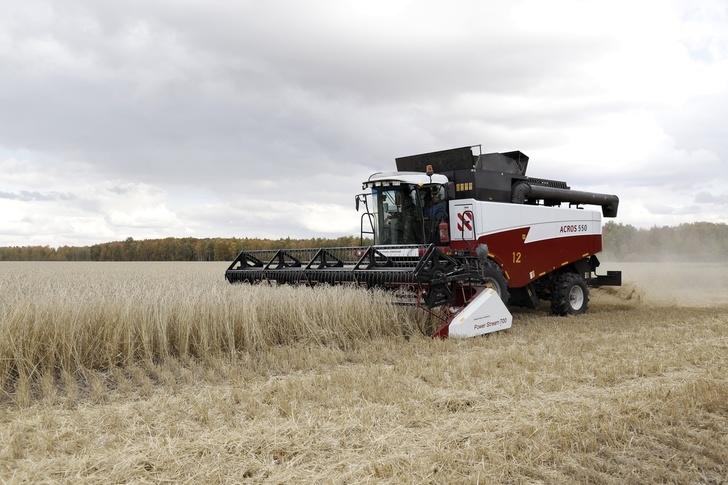 Russian Agriculture News - Page 10 A3VyZ2Fub2JsLnJ1L3NpdGVzL2RlZmF1bHQvZmlsZXMvc3R5bGVzL2NvbG9yYm94L3B1YmxpYy9maWVsZF9nYWxsZXJ5LzI4MjQyL21nMzE2Ny5KUEc_X19pZD0xMjQ5NDQmaXRvaz1NdUxqd01qdg==