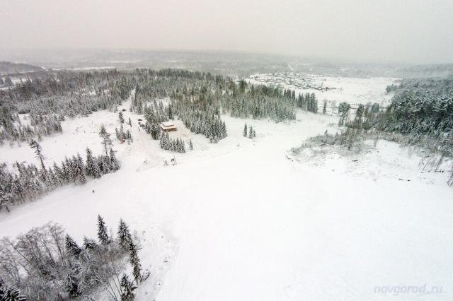 Новгородской области