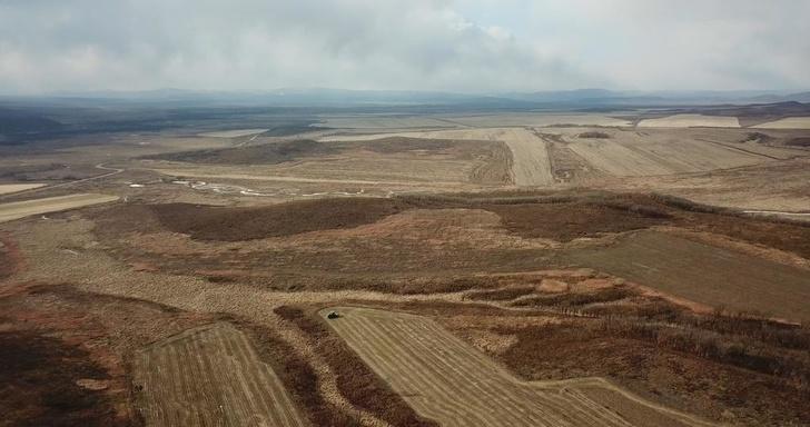 В Приморье запустили сельскохозяйственный комплекс с иностранными инвестициями