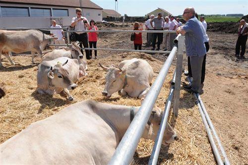 самарская делегация познакомилась с ульяновским опытом организации семейных ферм