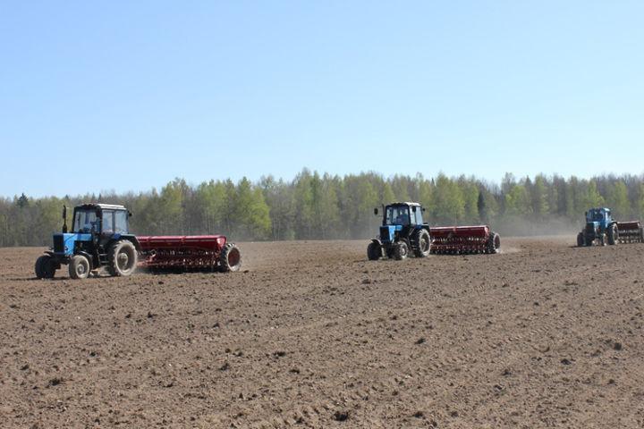 Московская область ввела в оборот 62 тыс. гектаров необработанных земель