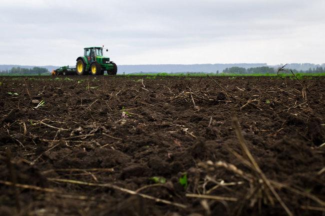 Как выращивают картофель: фермерское хозяйство Михаил Колпакова