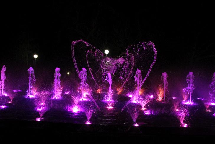 В Городском парке культуры и отдыха г. Орла произведен тестовый запуск светомузыкального фонтана