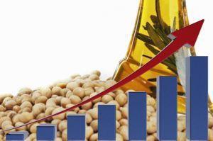 Производство российского соевого масла удвоилось