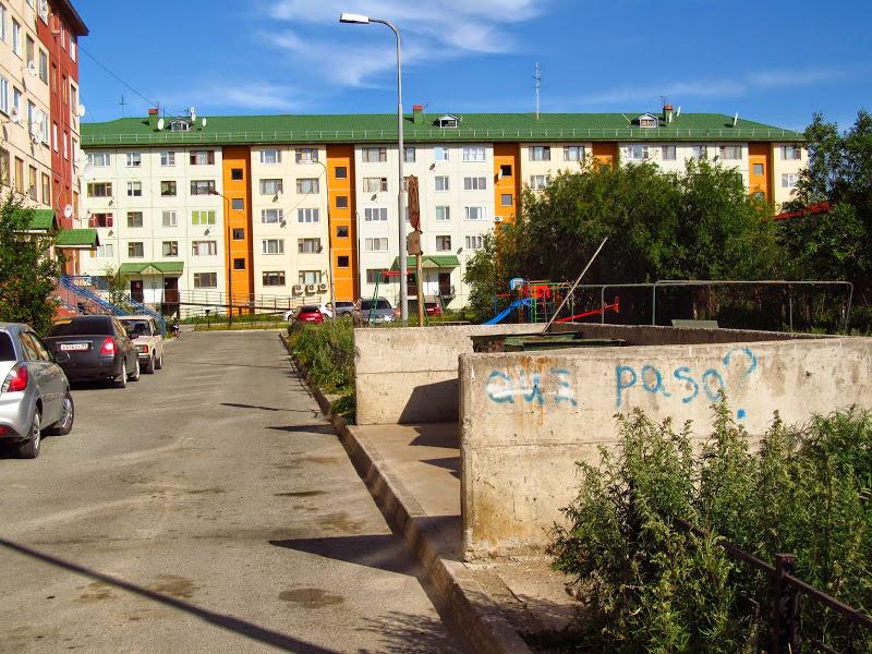 Погода с александровка суетского района алтайского края