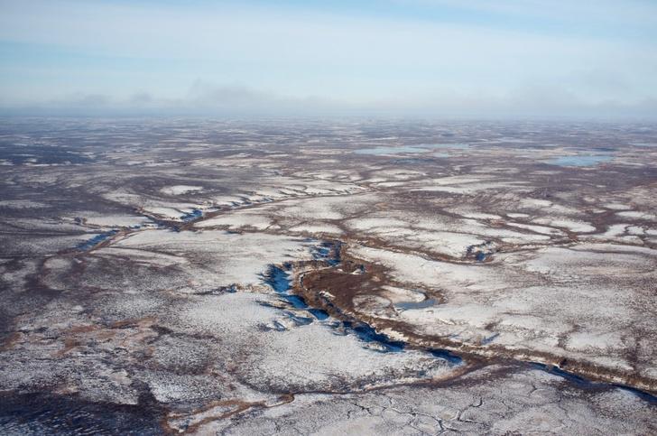 «Газпромнефть-Ноябрьскнефтегаз» открыл новые участки с запасами 80 млн тонн нефтяного эквивалента