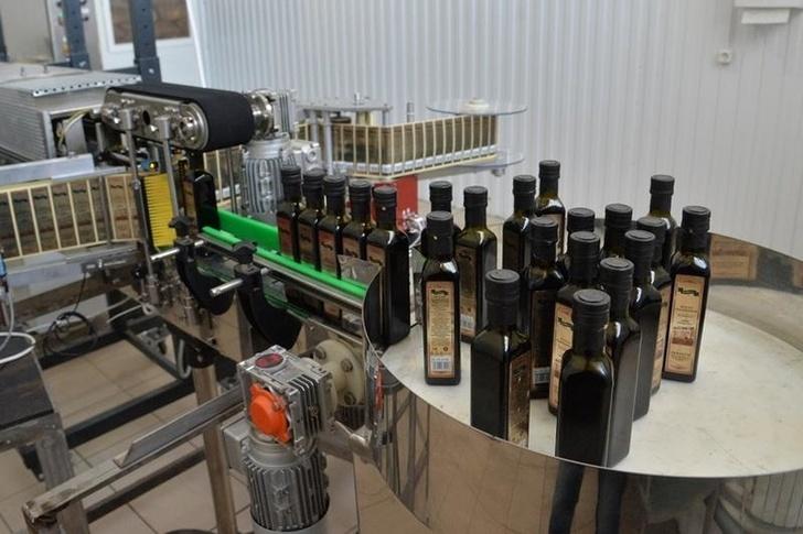 В Саратовской области СПК «БиоПром» запустила производство растительных масел из тыквы, льна, арбуза