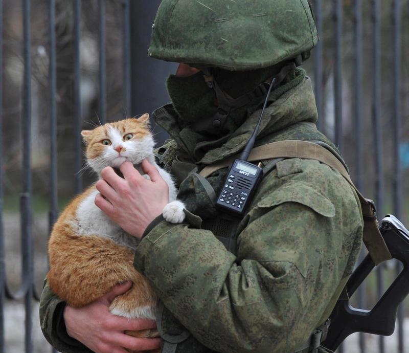 Блокировка российских соцсетей и кот «Ватник»: Крым за неделю