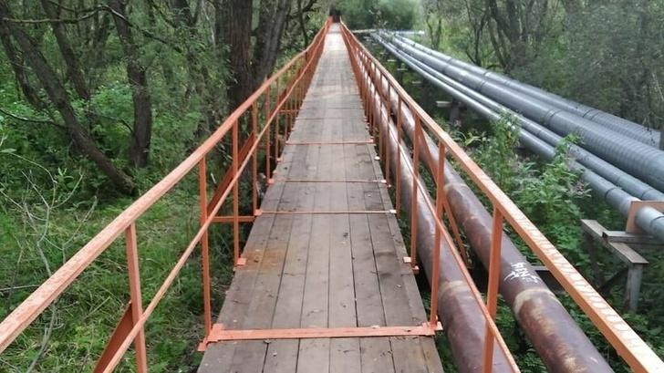 Пешеходный мост в Сергиевом Посаде