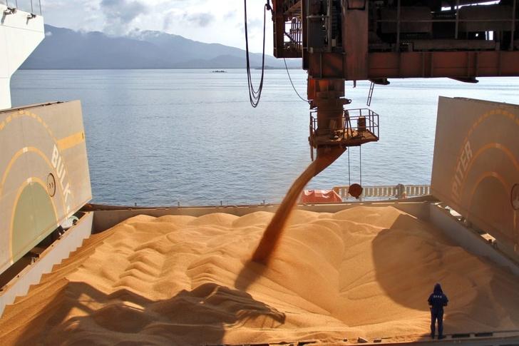 Экспорт пшеницы из России за 10 месяцев вырос на 50%, до 36,8 млн т