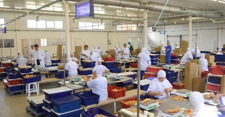 В Адыгее молзавод «Тамбовский» запустил новый цех упаковки молочной продукции