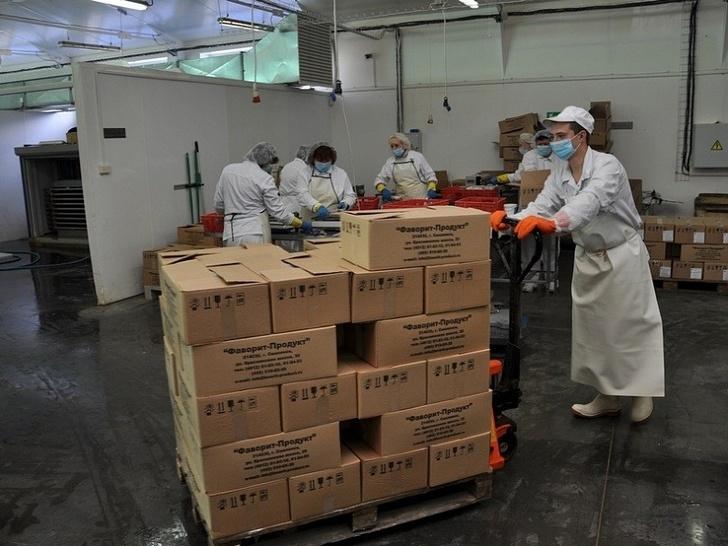 Смоленская компания «Фаворит-продукт» начала поставки морепродуктов в Грузию