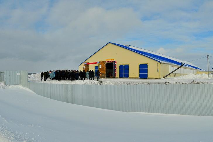 Ферма на 200 голов КРС открыта в Чувашии