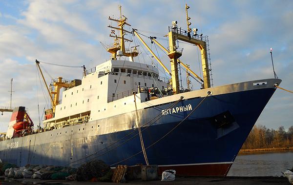 """Траулер """"Янтарный"""", доставивший в Мурманск мойву, вновь выходит на промысел"""