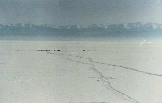 Вид на ледовый лагерь с берега. Дистанция 3,6 км. 1997 год.