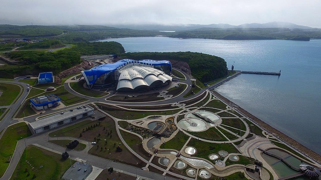 Приморский океанариум открылся для посетителей