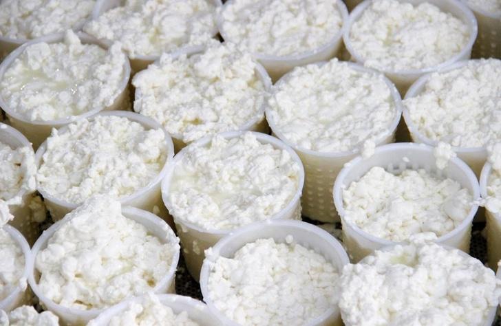 В Московской области открылась новая сыроварня