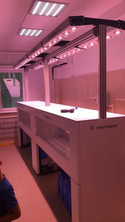 Установка Meristem для производства семенного материала картофеля