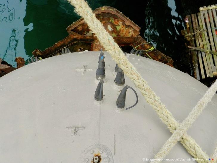"""носовая оконечность прочного корпуса. В воде видны очертания лёгкого корпуса """"Бентоса"""""""