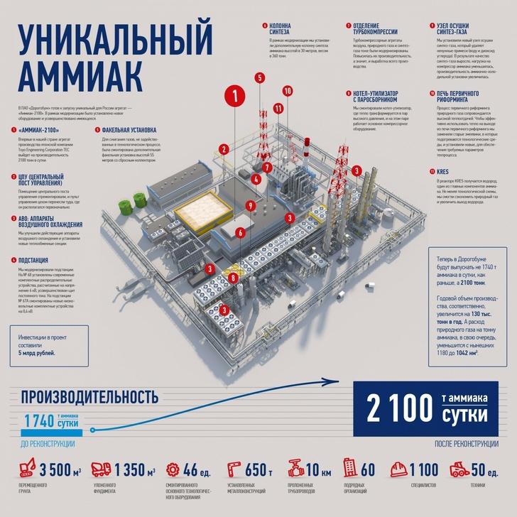 Инфографика проекта
