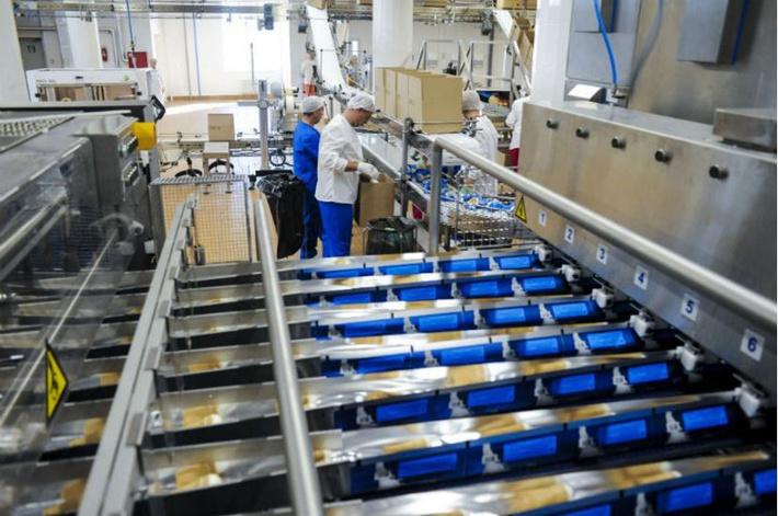 На Пермском хладокомбинате «Созвездие» открыта фабрика мороженого