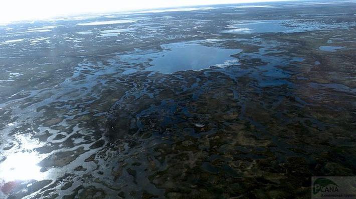 Миллион лет здесь не ступала нога человека. Сохранение экосферы - важнейшая задача российских нефтяников.