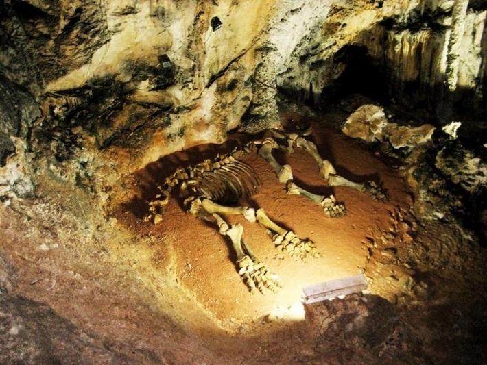 Пещера вертикального типа.