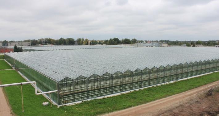 Агрокомбинат «Горьковский» в Нижнем Новгороде