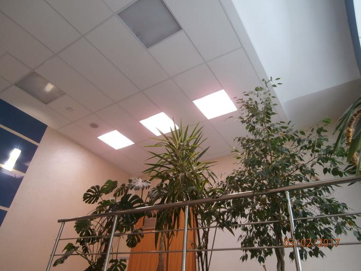 Фитосветильник офисный светодиодный ECOLED-44-HT-418 Fito IP20