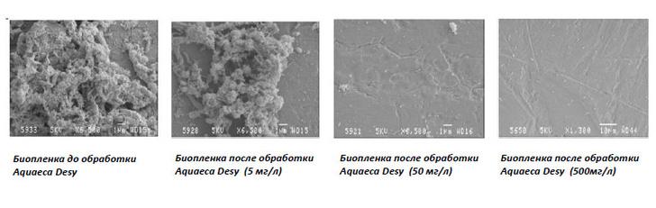 Акваэха-Дези хорошо справляется с источником заражения, удаляя биопленку с внутренней поверхности труб на производственных линиях.