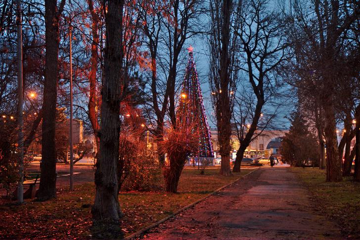Сквер им. В.И. Ленина. Крым. Симферополь.
