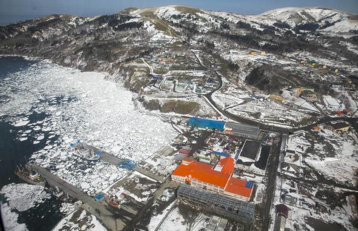 На курильском острове Шикотан создают новые рыбоперерабатывающие предприятия