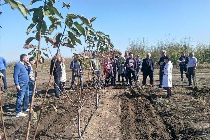 Крымская опытно-селекционная станция – филиал ВИР