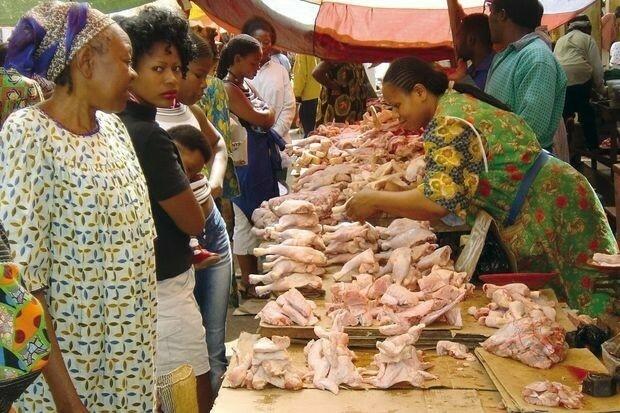 Поставки замороженного куриного мяса в Африку