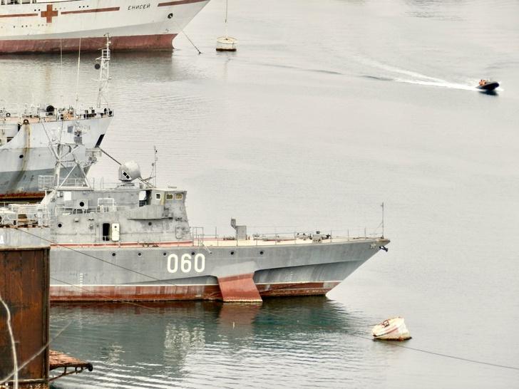 "МПК ""Владимирец"" без АУ АК-176. Фото из архива В.Никифорова"