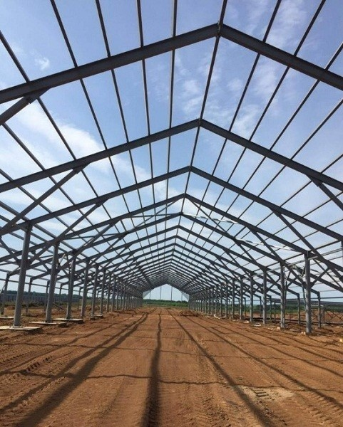 В Татарстане идет строительство молочной фермы на 1000 голов КРС