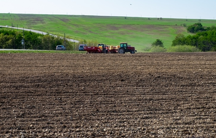 Сельскохозяйственные предприятия Сахалина приводят в порядок заброшенные земли