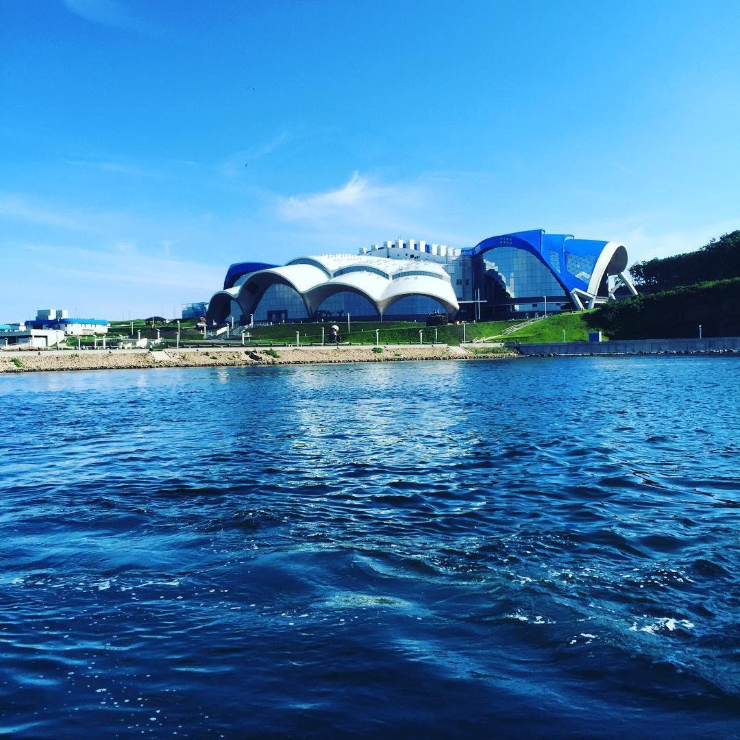 Наострове российский воВладивостоке открылся для гостей Приморский океанариум