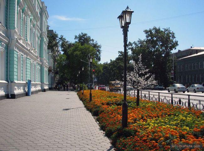 Аллея вдоль здания мэрии | Благовещенск (Амурская область)