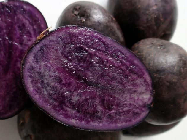 6 достижений российских селекционеров: разноцветные арбузы и фиолетовый картофель