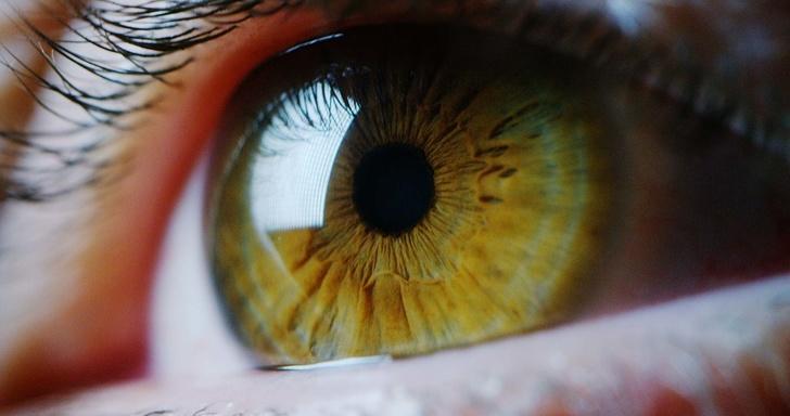 Глаз радуется: о разработках Ростеха в офтальмологии