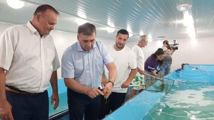 Russian Agriculture News - Page 11 CmsuZ292LnJ1L3VwbG9hZHMvbXNoL2F0dGFjaG1lbnRzLzJjL2ZkLzQ1LzYwNTM5Zjg4N2E1ZTQyMDQxMmIzNzBiMzYxLzVmMDRhZDk5OGE3NWM0LjEyMzM2MTg4X1doYXRzQXBwX0ltYWdlXzIwMjAtMDctMDdfYXRfMTAuMjUuNTcuanBlZz8zLjEuMg==