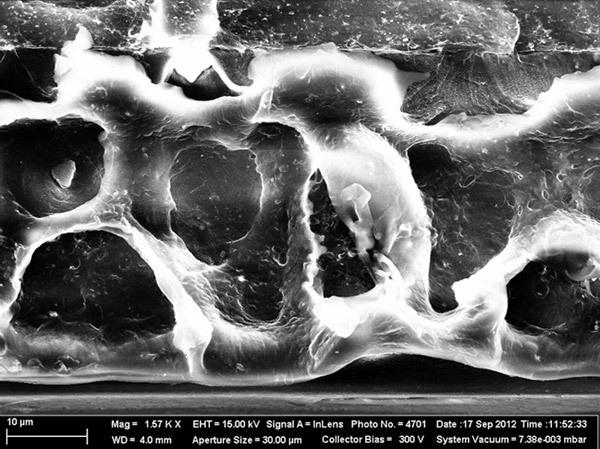 Фото полимерного материала, модифицированного нанокомпозитом в электронный микроскоп. Производитель пленки и нанокомпозита — ЗАО«Уралпластик-Н»