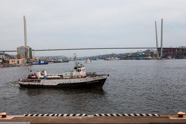 Владивосток атэс 2012 и мосты