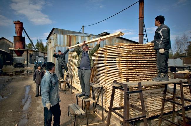 Деревообрабатывающее производство, принадлежащее Стерхову