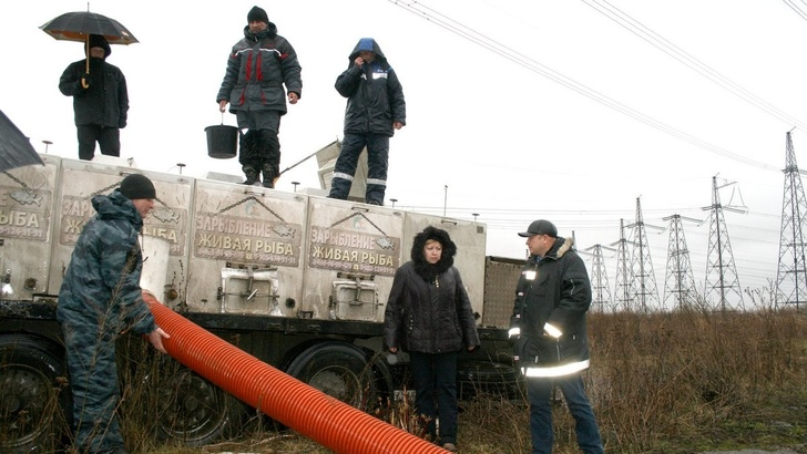 В Новомичуринское водохранилище Рязанская ГРЭС выпустила пять тонн рыбы