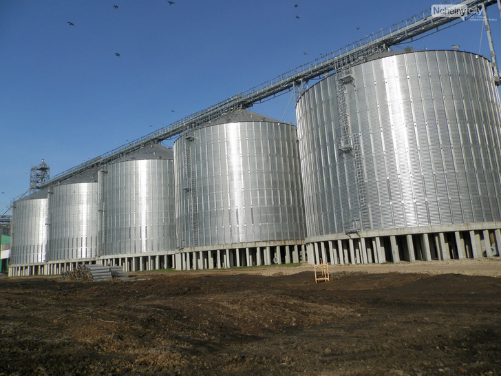 В Татарстане открылся крупнейший в Поволжье элеватор на 150 000 тонн сушки и хранения зерна