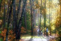 """6 октября в 10.30 в. ЮВАО. природно-историческом парке  """"Кузьминки-Люблино """". пройдет соревнование по геокэшингу..."""