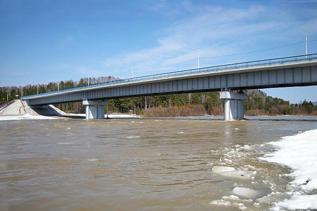 2008.12.23 Мост через реку Лебедь (Турочак, Алтай) - 202м